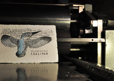 letterpress greeting card kingfisher korrex nurnberg