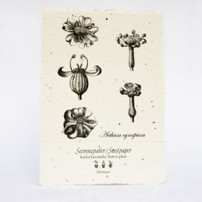 letterpress handmade seed paper postcard