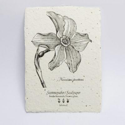 letterpress handmade seed paper