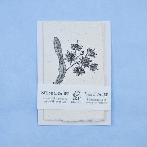 Tilia Tomentosa postcard seedcard