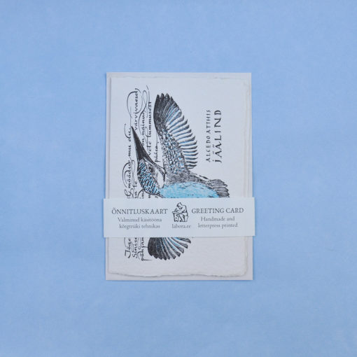 Kingfisher Postcard Greeting Card